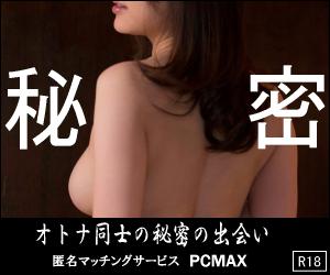 pcmax-1.gif